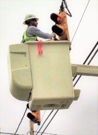 detenuto suicida a lecce electric williamsport - photo#33